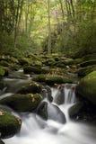 Smoky Mountain Flowing Stream. Beautiful flowing stream in Smoky Mountain National Park Stock Photos