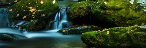 Smoky Mountain Stream. Smoky Mountain forest with waterfall stream and mossy rocks stock images