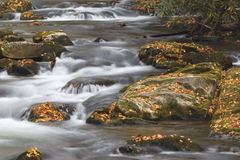 A Smoky Mountain National Park Stream In North Carolina. This is an image of a mountain stream in North Carolina Stock Photography