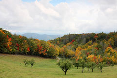 Smoky mountain scenery. Scenic fall view of the smoky mountain national park Stock Images