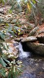 Smoky mountain. Small waterfall off trail Royalty Free Stock Photo