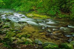 Smoky Mountain Spring Royalty Free Stock Images