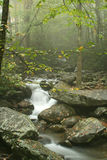 Smoky Mountain Stream. Flowing Water in Smoky Mountain Stream near Gatlinburg Tennessee Royalty Free Stock Photography