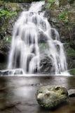 Smoky Mountain Stream Royalty Free Stock Photos