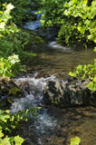 Smoky Mountain Stream Royalty Free Stock Image