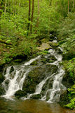 Smoky Mountain Waterfall. In the National Park Stock Photography