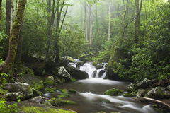 Relaxing scenic in the Great Smoky Mountains USA Royalty Free Stock Photography