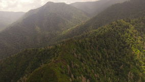 Smoky Mountains Aerial. V2 Flying over Chimney Tops summit panning down to vertical shot stock video footage