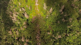Smoky Mountains Aerial. V9 Flying vertical shot over Chimney Tops summit stock video