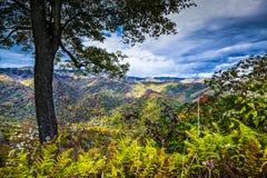 Smoky Mountains. Autumn in the Smoky Mountains National Park Stock Photography