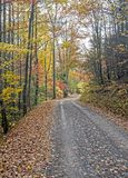 A narrow mountain road travels through fall colors. The Smoky Mountains in fall along a lonesome narrow  road Royalty Free Stock Photography