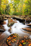 Smoky Mountains National Park Royalty Free Stock Photo