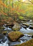 Smoky Mountains National Park Royalty Free Stock Photos