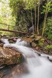 Smoky Mountains National Park River and Trails Stock Images