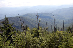 Smoky Mountains panorama from Clingmans Dome. In Great Smoky Mountains National Park, Tennessee Stock Photography