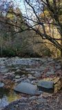 Smoky mountains. Stream in late fall Royalty Free Stock Photography