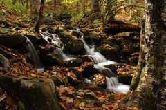 Smoky Mountains Waterfall. Small waterfall off of  Newfound Gap Road in the Smoky Mountains Stock Image