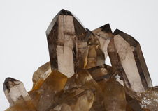 Smoky Quartz crystals. A cluster of brown Smoky Quartz crystals from Switzerland Stock Image