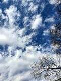 Smoky white feathery clouds photographed in Bloemfontein, South Africa