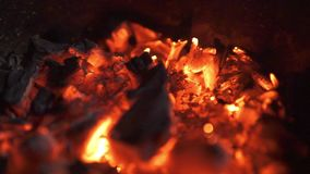 Smoldering ashes of bonfire stock footage