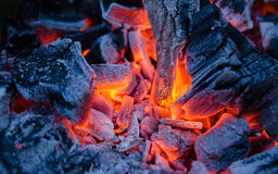 Smoldering ashes. Burning coal. BBQ barbecue. Smoldering ashes of charcoal. BBQ barbecue Royalty Free Stock Photography