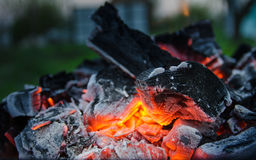 Smoldering ashes. Burning coal. BBQ barbecue. Night warm kebab photo Stock Photography