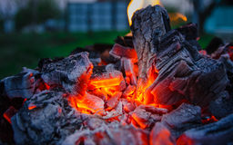 Smoldering ashes. Burning coal. BBQ barbecue. Night warm kebab photo Stock Images