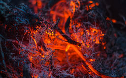 Smoldering ashes in the fire. Dark smoldering ashes in the fire Stock Photography