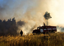 Smoldering remains of a green forest with a fireman spraying water. royalty free stock images