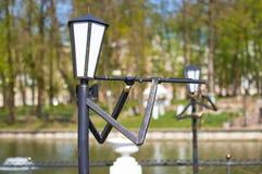SMOLENSK ROSJA, MAJ, - 03, 2018: Lampiony w parku w dla Obrazy Royalty Free