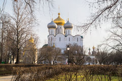Smolensky大教堂和普罗霍罗夫教堂在Novodevichy女修道院,莫斯科 免版税库存照片