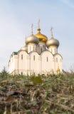 Smolensky大教堂在Novodevichy女修道院,莫斯科 免版税库存图片