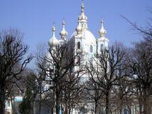 Smolny Catedral in de lente. Stock Afbeeldingen