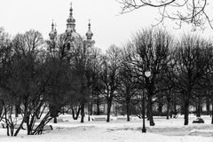 Smolny Cathedral Stock Photography