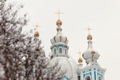 Smolny-Kathedralenwinter lizenzfreies stockfoto