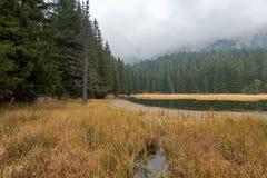 Smolyan jeziora w Bułgaria podczas jesieni fotografia royalty free