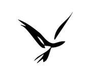 Smooth Bird Stock Photos