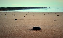 Smooth black stone on the sand by the ocean. With other stones in the background Stock Photos