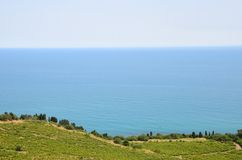 Smooth blue sea and green shoreline with vineyards Stock Photos