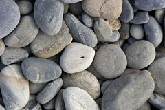 Smooth brook stones Stock Image