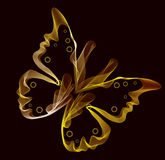Smooth colorful abstract butterfly. Over dark Stock Photos