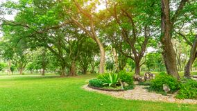Free Smooth Green Grass Lawn In Good Care Maintenance Garden, Decorated With Flowering Plant, Shrub And Bush Under Shading Trees Stock Photo - 157375570