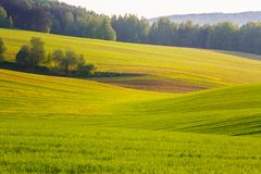 Smooth green lines of majestic scenery in springtime stock photography