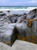 Beach: smooth greywacke rocks Stock Image