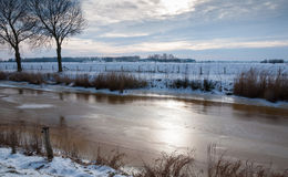 Smooth ice in a Dutch country polder area Royalty Free Stock Photos