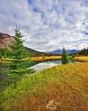 Smooth lake. Royalty Free Stock Photo