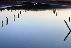 Smooth lake surface. The smooth surface of a lake with two swans in the distance. Clear sky reflected in the water Stock Images
