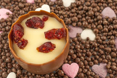 Smooth milk chocolate with an aromatic cherry brandy truffle center, decorated with sweetened dried cranberry pieces Stock Images