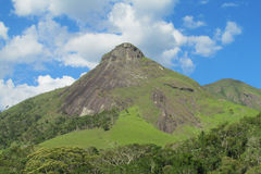 Smooth mountain in tropical forest Stock Images