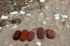 Smooth patterned and colorful wet stones on a sandy beach in Florida royalty free stock photography